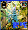 Big Buddha Blue Cheese Female 10 Cannabis Seeds